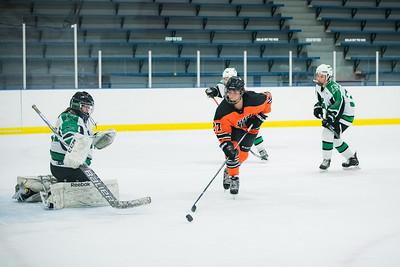DLS_4283HockeyHM