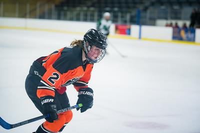DLS_4182HockeyHM