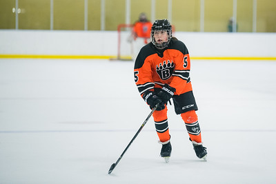 DLS_4328HockeyHM
