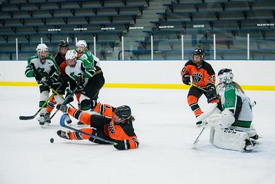 DLS_4326HockeyHM