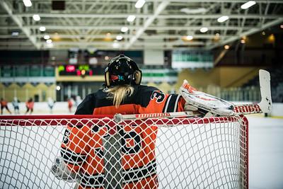 DLS_4212HockeyHM