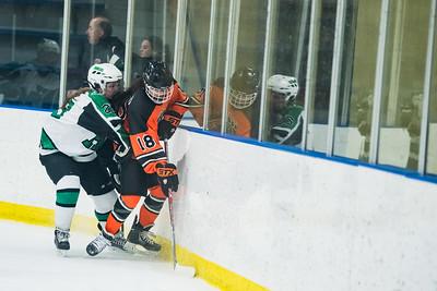 DLS_4153HockeyHM