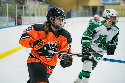 DLS_4332HockeyHM
