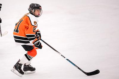 _DLS8667GirlsHockeyVHM18o