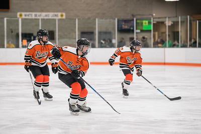 _DLS8613GirlsHockeyVHM18o