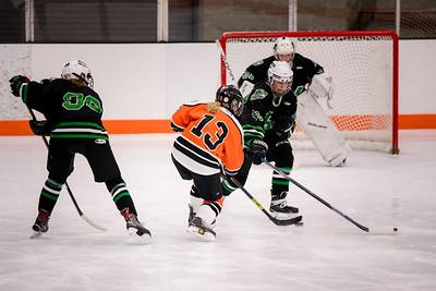 _DLS8701GirlsHockeyVHM18o
