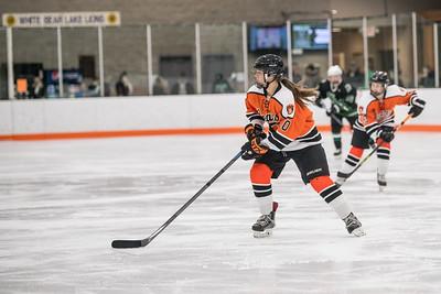 _DLS8584GirlsHockeyVHM18o