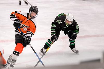 _DLS8661GirlsHockeyVHM18o