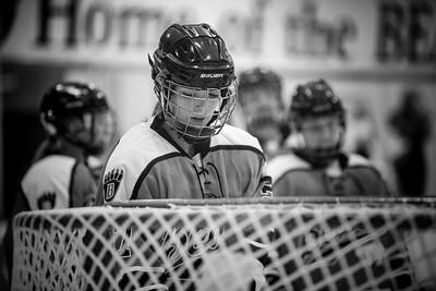 _DLS9092GirlsHockeyVHM18o