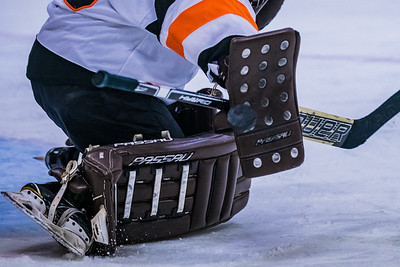 _DLS4644GHockey1stPlayoff19