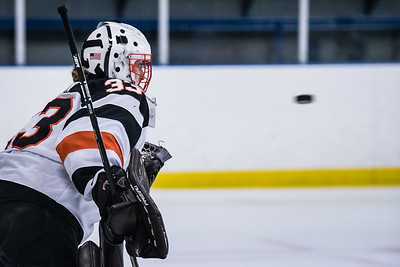 _DLS4637GHockey1stPlayoff19