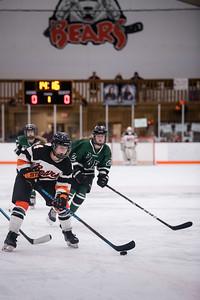 DSC_3170GirlsHockeyVPark