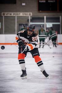 DSC_3068GirlsHockeyVPark