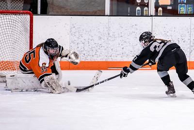 _DLS0697GirlsHockeyVRV19