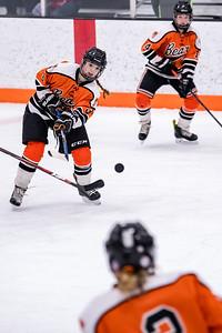 _DLS0666GirlsHockeyVRV19