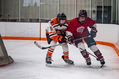 DSC_4475BoysHockeyBantumB22019