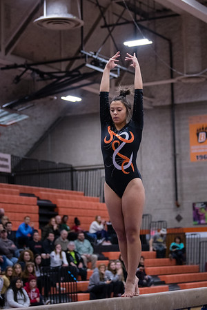 DSC_0494Gymnastics2019