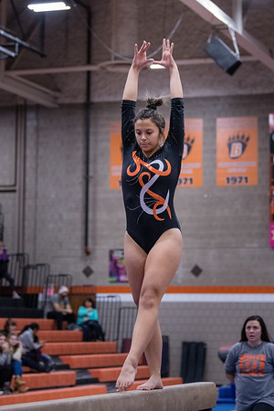 DSC_0436Gymnastics2019
