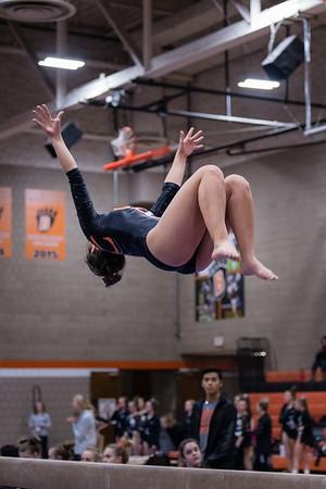 DSC_0287Gymnastics2019