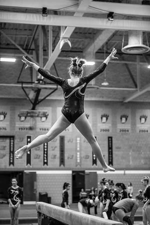 DSC_0140Gymnastics2019
