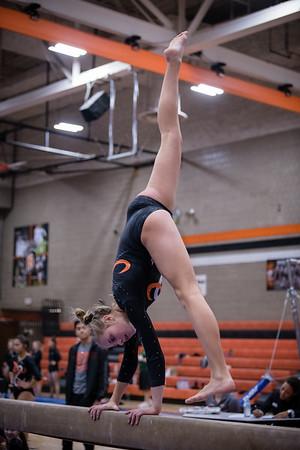 DSC_0150Gymnastics2019