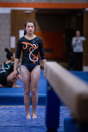 DSC_0165Gymnastics2019