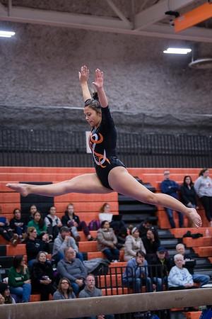 DSC_0558Gymnastics2019