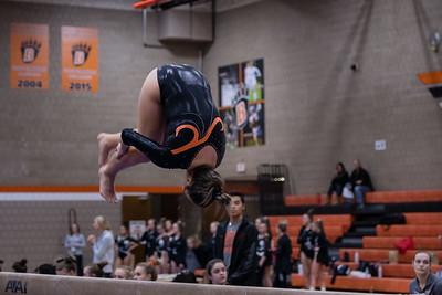 DSC_0289Gymnastics2019