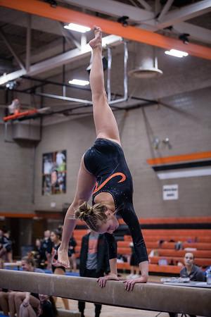 DSC_0146Gymnastics2019