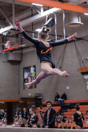 DSC_0341Gymnastics2019