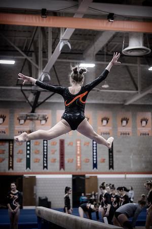DSC_0141Gymnastics2019