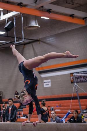 DSC_0360Gymnastics2019