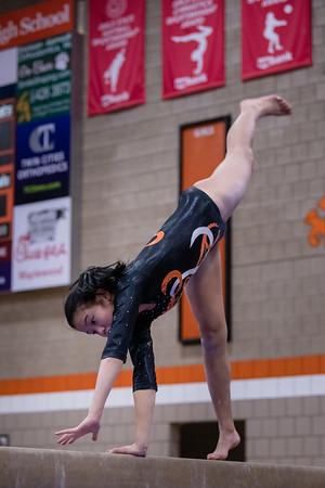 DSC_0635Gymnastics2019