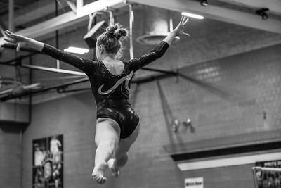 DSC_0330Gymnastics2019