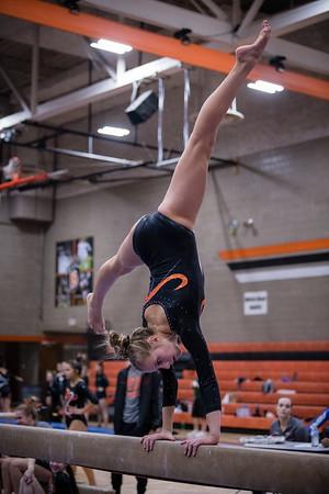 DSC_0147Gymnastics2019