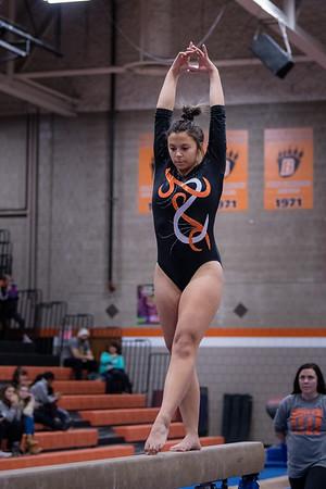 DSC_0437Gymnastics2019
