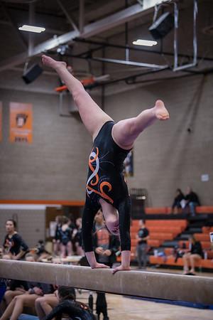 DSC_0045Gymnastics2019