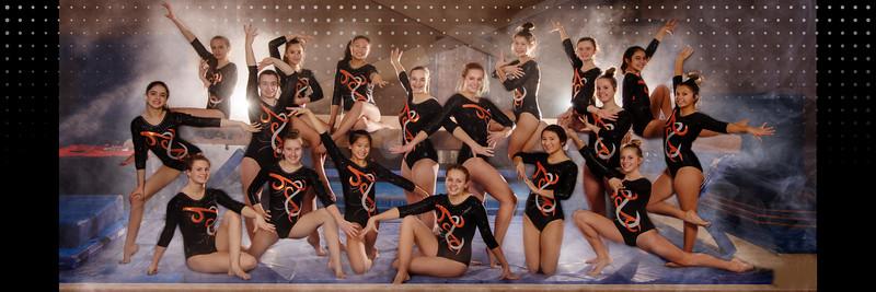 Gymnastics2019Banner
