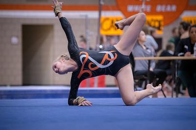 _DLS2381Gymnastics2019