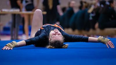 DSC_1693Gymnastics2019