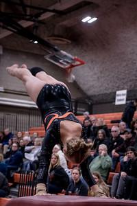 _LAS1501GymnasticsVRoseville2020