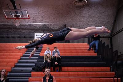_LAS1681GymnasticsVRoseville2020