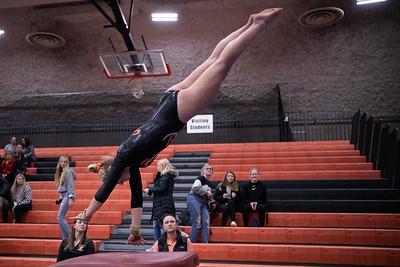 _LAS1561GymnasticsVRoseville2020