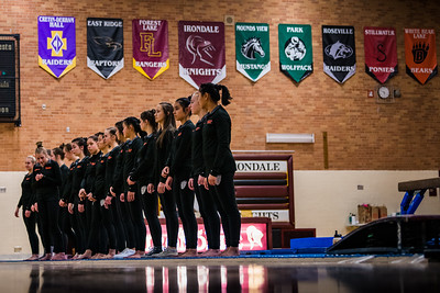 _DLS5301GymnasticsVIrondale2020