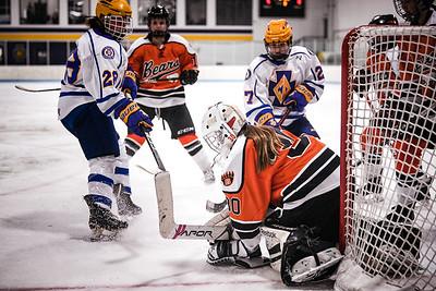 _DLS2449GirlsHockeyVCretin2020