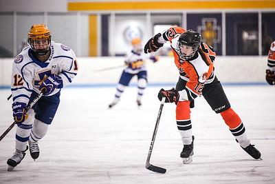 _DLS2442GirlsHockeyVCretin2020