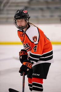 _DLS9261WBLgirlsHockeyIrondale2019