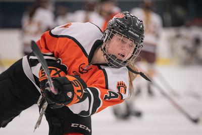 _DLS9371WBLgirlsHockeyIrondale2019
