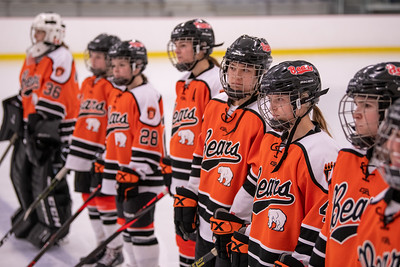 _DLS9463WBLgirlsHockeyIrondale2019
