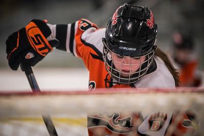 _DLS9424WBLgirlsHockeyIrondale2019
